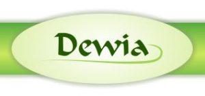 DEWIA – DER WEG INS ALTER